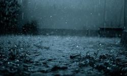 Danas jače padavine