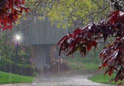 Sutra oblačno sa kišom
