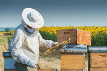 Uručena oprema pčelarima vrijedna 74.500 KM