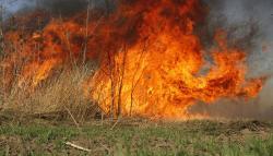 Spriječimo požare, ne palimo vatru na otvorenom prostoru