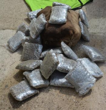 U Gacku pronađena 73 celofanska pakovanja opojne droge marihuane