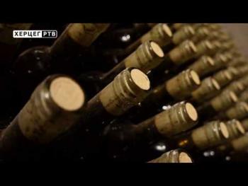 Kvalitetno vino pravi se u vinogradu! (VIDEO)