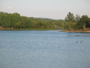 Nevesinjski sportski ribolovci izvšili poribljavanje jezera Alagovac