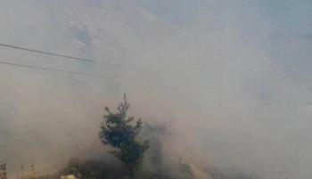 TVJ Gacko: Lokalizovan šumski požar u Ključu