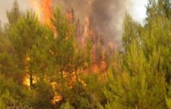Borba s požarima u Trebinju
