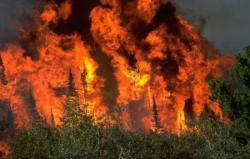 Bileća: Vatra