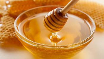 Natprosječna godina za hercegovačke pčelare