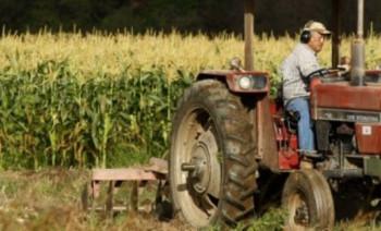 Svaki treći radnik u Srpskoj zaposlen u poljoprivredi