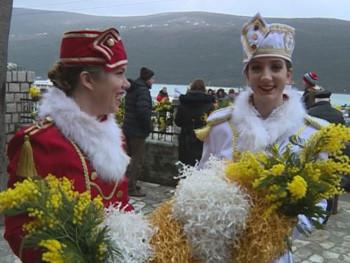 U Herceg Novom počela fešta od mimoze