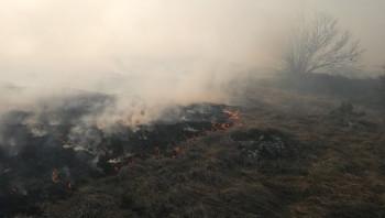 Gatački vatrogasci za požar krive ljudski faktor: Ovdje ništa ne može pomoći nego kiša (FOTO)