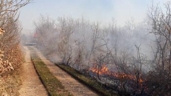 Vatrogasci odbranili kuće od požara na Koritima