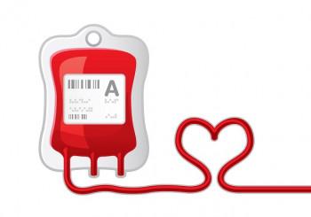 Bileća: Akcija darivanja krvi