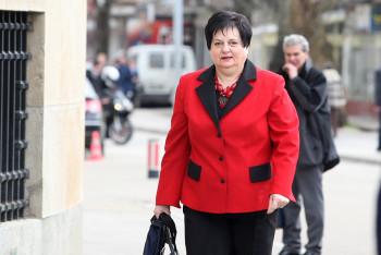 Majkić: Bošnjačka politika protivnik Srpske i svega što Srbi obilježavaju