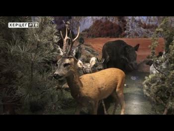 Intermeco: Prirodnjačke blagodeti ukrasile Muzej Hercegovine (VIDEO)