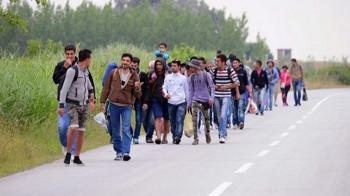 Gacko: Spriječeno krijumčarenje četvoro Sirijaca