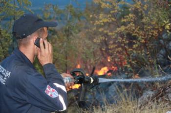 Požar kod Trnovice zahvatio šumu, nisu ugrožene kuće