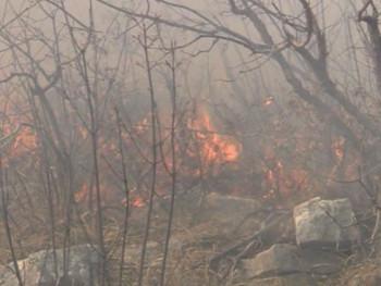 Пожар код Требиња се проширио, вјетар отежава гашење