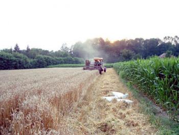 Isplaćeno 2,7 miliona KM za podsticaje u poljoprivredi