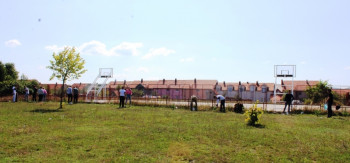 Nevesinje: Srednjoškolci zasadili drvored na Gvozdu