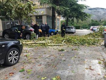 Nevrijeme u Mostaru 'pokosilo' drveće