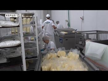 Pašalić: Nabavkom 200 junica do povećanja proizvodnje mlijeka (VIDEO)