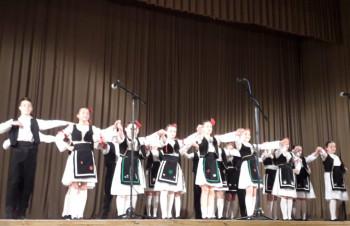 Gacko: Humanitarni koncert za Snežanu Davidović