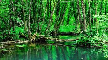 NAJAVA: Projekcija dokumentarno-promotivnogfilmao zaštićenim područjima prirode RS