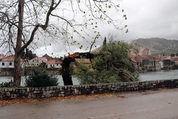 Vjetar polomio stablo, voda ušla u kuće