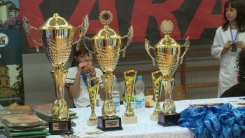 Višegradski karatisti osvojili deset medalja