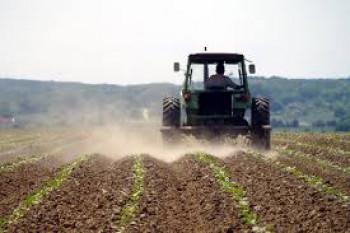 Trebinje: Subvencije za više od 900 poljoprivrednika