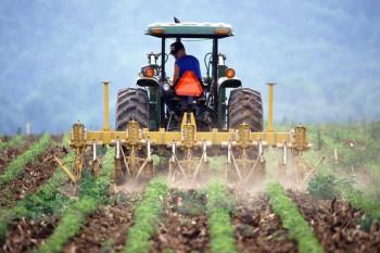 Ministarstvo poljoprivrede: Isplaćeno 3.720.758 KM podsticaja