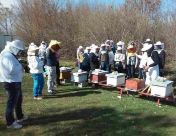 Обавјештење из Удружења пчелара општине Невесиње
