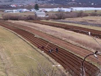 U Trebinju počela nabavka i sadnja povrtarskih kultura