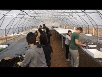 Trebinje: Otvoren moderan rasadnik, posijan prvi rasad paprike i paradajza (VIDEO)