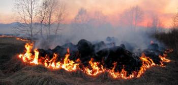 Kazna od 100 do 1.000 KM za neodgovorno paljenje vatre na otvorenom