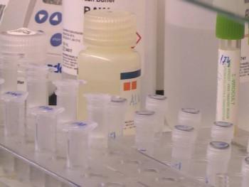 U Crnoj Gori još 11 novozaraženih
