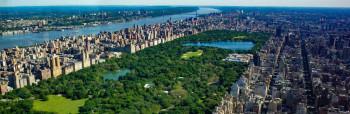 Central park – oaza prirode  u kojoj ponovo pjevaju ptice