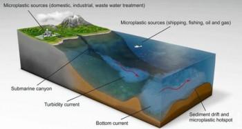 Ljudski nemar: Uspjeli smo da plastificiramo i dno okeana