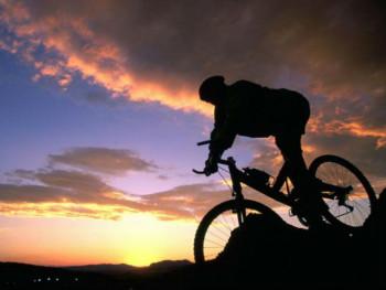 Cvjeta prodaja bicikala širom svijeta