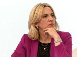Премијерка демантује Михајлицу:
