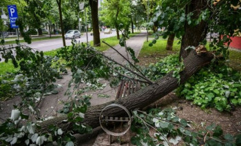 Jak vjetar napravio haos u Banjaluci: Padalo drveće, oštećen auto
