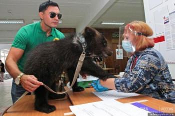 На гласачко мјесто дошао са медвједићем