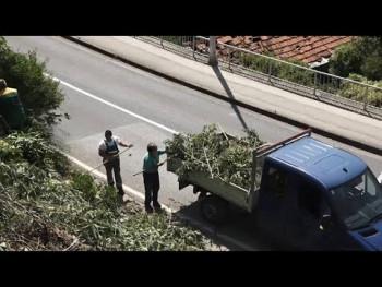 Organizovana akcija uređenja Kosića padine (VIDEO)