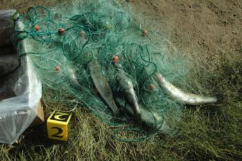 Nevesinjska policija rasvijetlila krivično djelo 'Nezakonit lov'