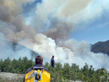 Požar u Poljicu, vatra odbijena od kuća