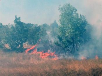 Bileća: Požar u Koritima, kuće odbranjene