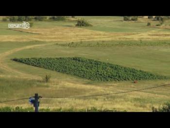 Agrarni fond: Raspisan javni poziv za dodjelu mini-grantova (VIDEO)