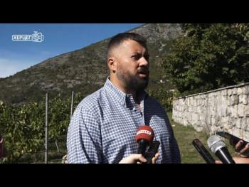 Vinarija Vukoje: Počela berba u Carskim vinogradima (VIDEO)