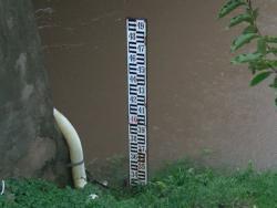Bistrica se izlila, Drina blizu kritične tačke u Foči