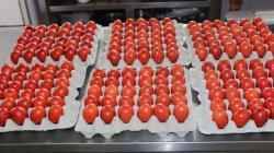 Eparhija će ove godine podijeliti 10.000 vaskršnjih jaja